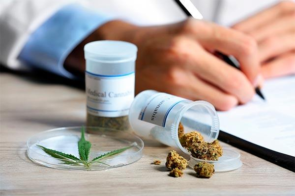 la comision de sanidad aprueba una iniciativa para regular el uso del cannabis en tratamientos terapeuticos