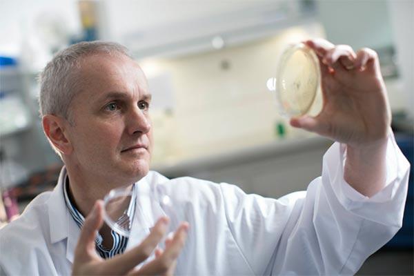 un estudio de la universidad de ulster abordara el exceso de acne