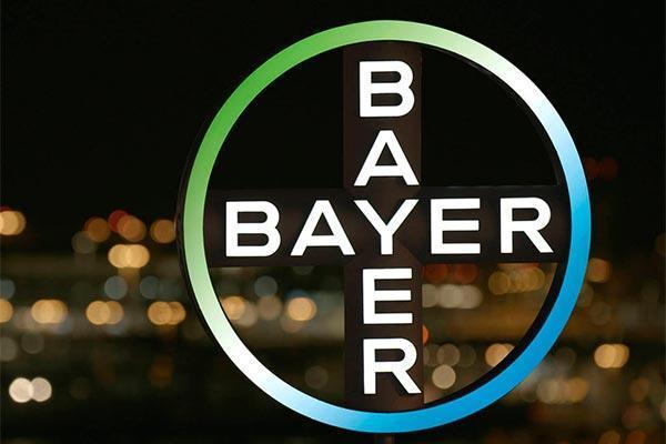 la fundacion bayer destinara 417000 euros a la promocion del talento de 65 jovenes de todo el mundo