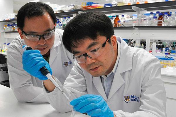 descubren una potente actividad antitumoral in vitro en dos farmacos ya autorizados