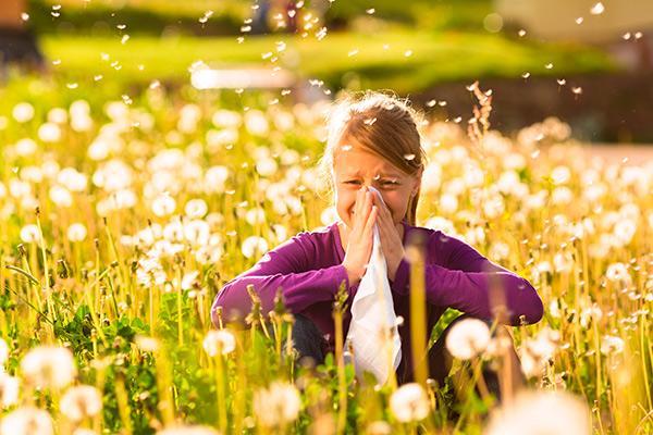 el cof de jan aconseja sobre la alergia al polen