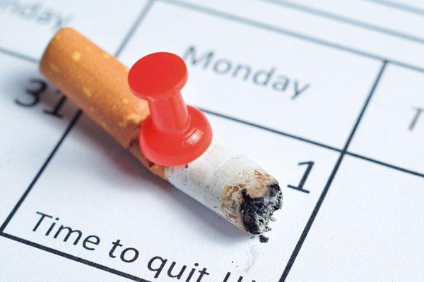 plantndole cara al tabaco