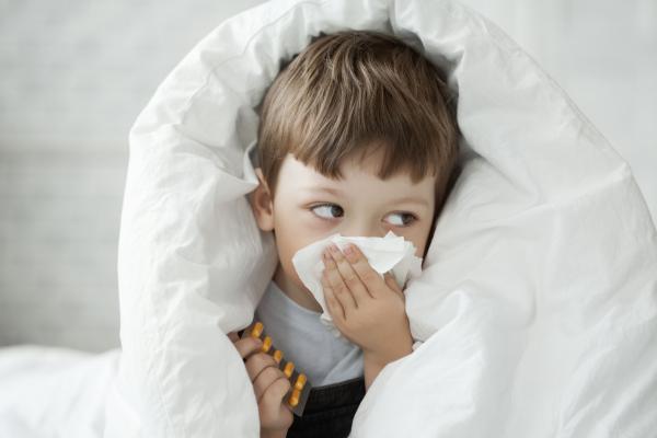 vuelve el curso fitoterapia en las patologias invernales de agora sanitaria