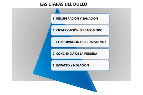 outplacement-personalizado-un-servicio-para-empresas-y-particulares