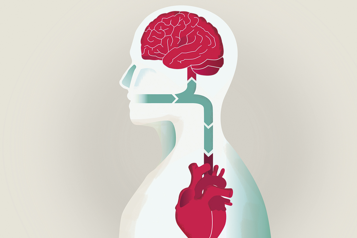 relacion-entre-la-enfermedad-cardiovascular-y-las-patologias-bucodentales