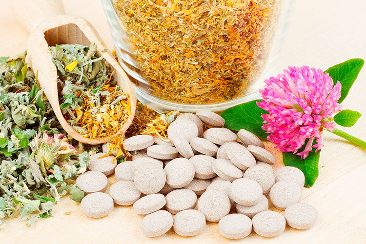 el-cgcof-y-arkopharma-apuestan-por-las-plantas-medicinales