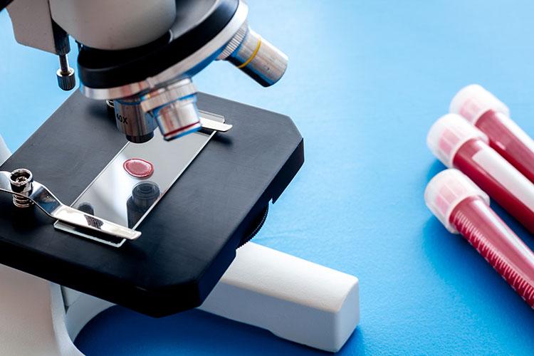 el-sector-farmaceutico-lidera-la-inversion-espanola-en-id