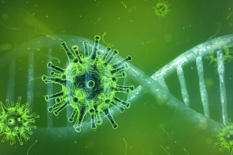 El coronavirus a 31 de marzo: 94.417 personas afectadas, 5.607 en UCIs, 8.189 fallecidos, y 19.259 curados