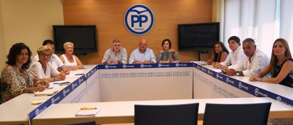 el pp andaluz tilda a las subastas de medicamentos de quotchapuza sanitariaquot y exige su fin