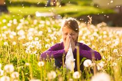 se dispara la venta de antihistamnicos para tratar las alergias
