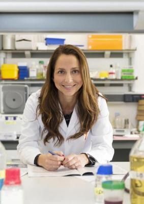un biobanco quotvivientequot de modelos de caacutencer de mama permite probar la respuesta a faacutermacos antitumorales y sus combinaciones