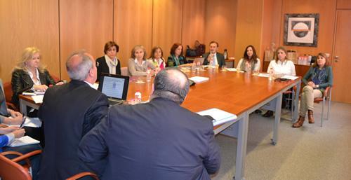 comisian conjunta universidadprofesian farmacautica para impulsar la docencia de la atencian farmacautica