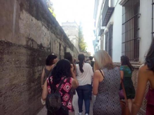 50 dermatlogos participan en la ruta dermosaludable sevilla a la sombra de la aedv
