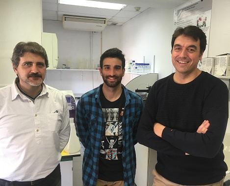 la ub desarrolla un nuevo meacutetodo computacional para disentildear faacutermacos con mayor eficiencia