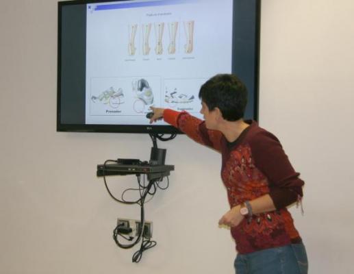 los farmaceacuteuticos alaveses se forman en nutricioacuten fisioterapia y podologiacutea deportivas