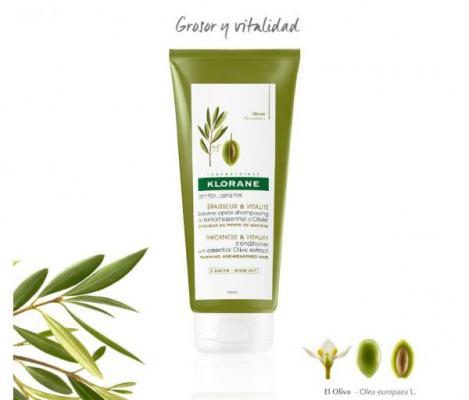 klorane lanza un baacutelsamo para despueacutes del champuacute al extracto esencial de olivo