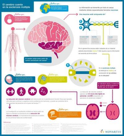 novartis presenta nuevos datos que refuerzan la importancia clnica de medir la atrofia cerebral en la em