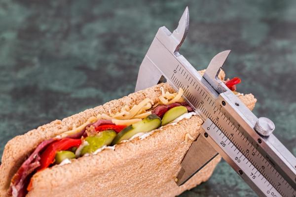 la seen alerta sobre la proliferacioacuten de las dietas quotde modaquot