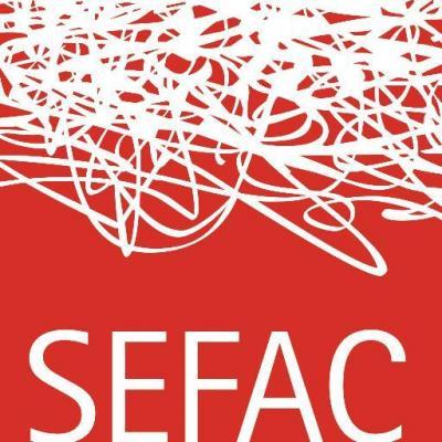 sefac actualiza su guiacutea de actuacioacuten para la anticoncepcioacuten de urgencia en farmacia comunitaria